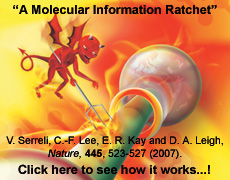 A Molecular Information Ratchet