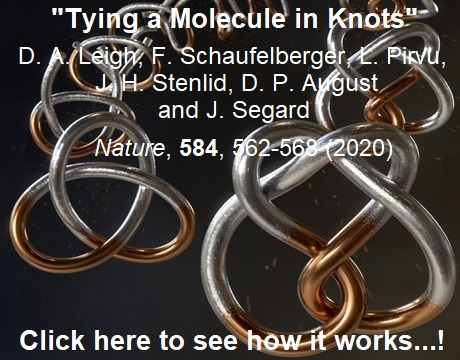 Tying different knots in a molecular strand